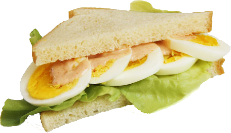 The Missing Link -Sandwich